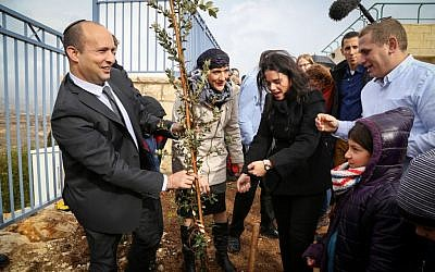 Education Minister Naftali Bennett and Justice Minister Ayelet Shakedplant a tree near a  school in the West Bank settlement of Tekoa, January 24, 2016. (Gershon Elinson/Flash90)