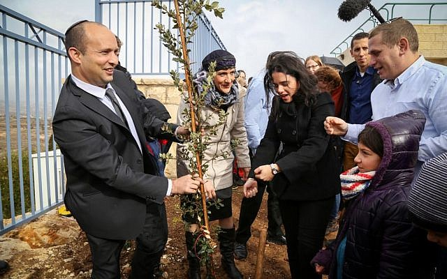 Education Minister Naftali Bennett and Justice Minister Ayelet Shaked plant a tree near a school in the West Bank settlement of Tekoa, January 24, 2016. (Gershon Elinson/Flash90)