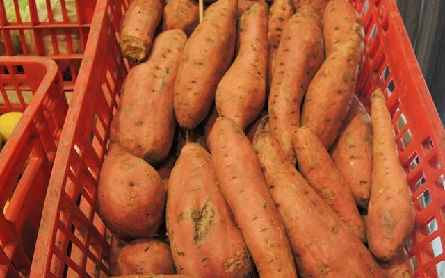 """""""Rescued"""" sweet potatoes that have cosmetic issues, meaning they would not have made it to supermarket shelves. (Melanie Lidman/Times of Israel)"""