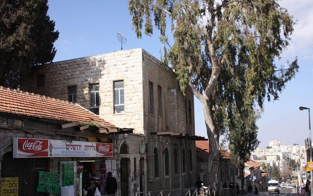 The sole huge, aging eucalyptus tree on the main street of Jerusalem's Bukharim neighborhood (Shmuel Bar-Am)