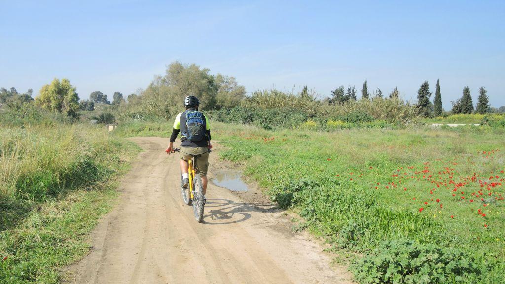 Patricio (Pato) Tanner, owner of the 217 bike store, rides near Kibbutz Karmia on January 21, 2016 (Melanie Lidman/Times of Israel)