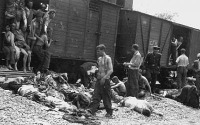 Jewish victims of the Iași pogrom on July 1, 1941. (Wikimedia commons)