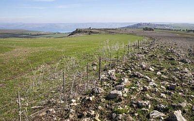 The area near Kfar Hittim in the Galilee where the Israeli government plans to build a new town near historic site, on January 28, 2016. The planned construction of a Druze town, near the site of a historic battle between crusaders and Muslim icon Saladin, may threaten archaeological treasures registered with UNESCO for possible future inclusion on its list of World Heritage sites. (Jack Guez/AFP)