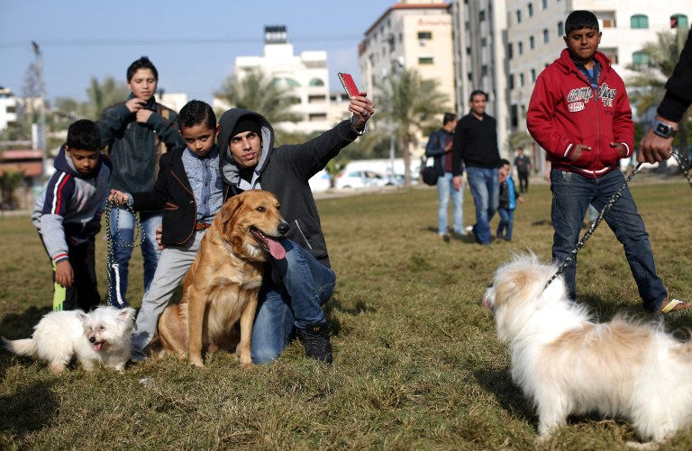 Palestinian youth take a selfie with a dog during the first dog show in Gaza City, on February 5, (Mohammed Abed/AFP)