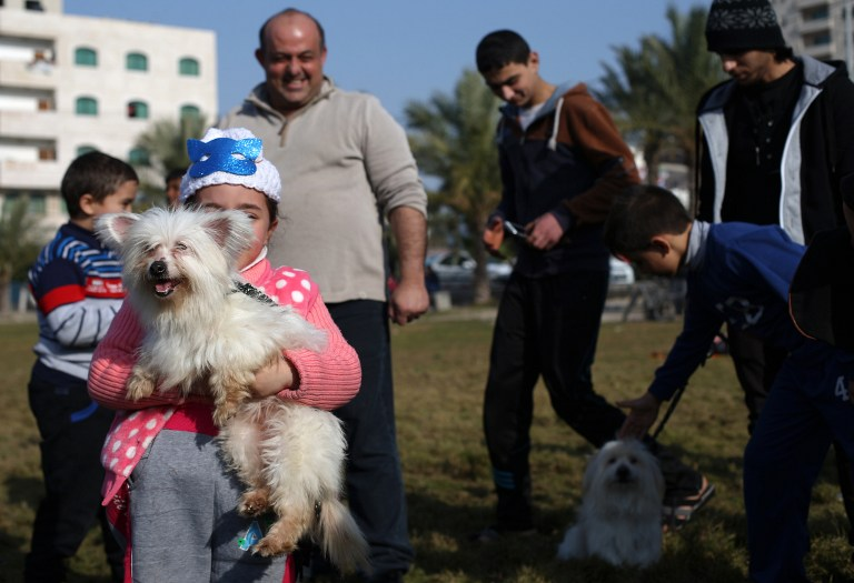 A Palestinian girl poses for a picture with a dog during the first dog show in Gaza City, on February 5, 2016, organised by dog owners in the Gaza Strip. (Mohammed Abed/AFP)