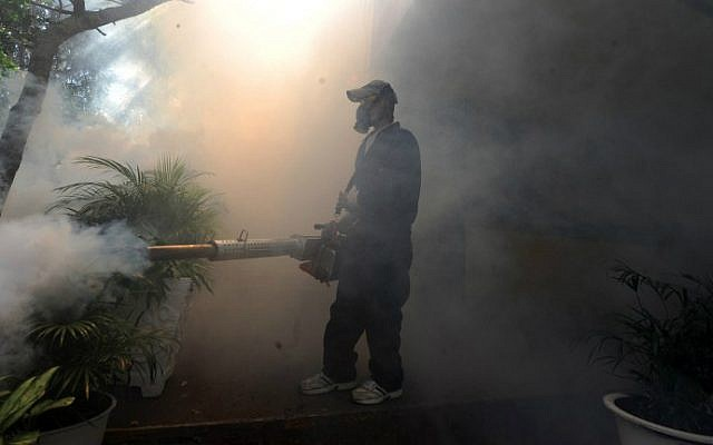 Health ministry personnel fumigate against the Aedes aegypti mosquito, carrier of the Zika virus, in Tegucigalpa, Honduras, on February 1, 2016. (AFP Photo/Orlando Sierra)