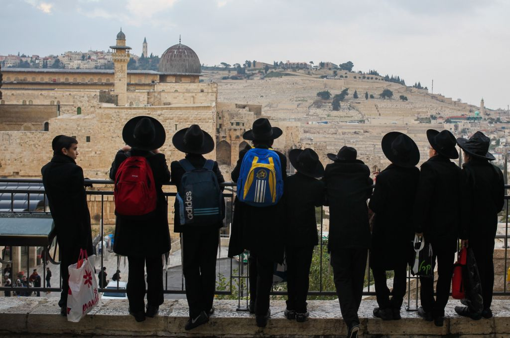 Ultra-Orthodox Jewish men look out over the southern end of the Temple Mount in Jerusalem on December 17, 2015. (Esther Rubyan/FLASH90)
