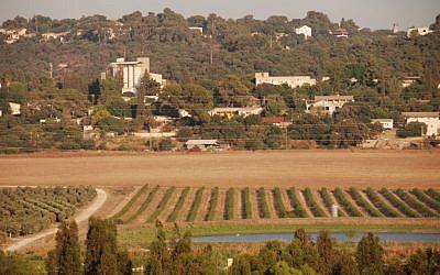 Kibbutz Sha'ar HaAmakim in 2008 (John Dodo/WikiCommons)