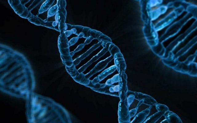 Illustrative image: DNA (Pixabay)
