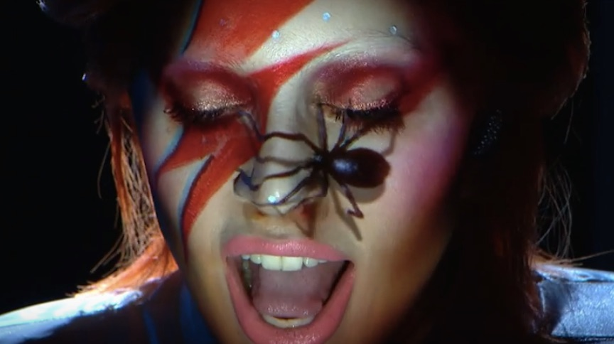 Lady A S Ziggy Stardust Makeup