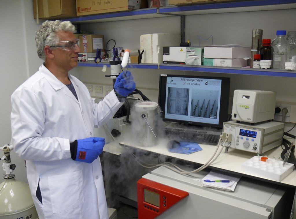 Professor Ido Braslavsky at work in the lab (Courtesy)