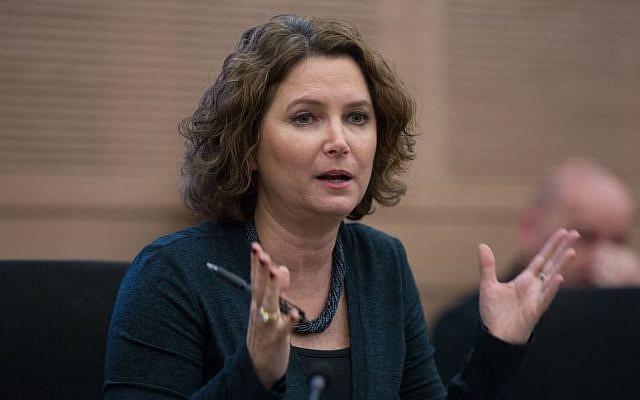 Meretz MK Michal Rozin speaks during a committee meeting in the Knesset, December 14, 2015. (Yonatan Sindel/Flash90)