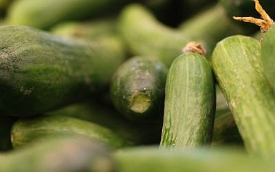 Illustrative: Fresh cucumbers in the Mahane Yehuda Market, Jerusalem. (Oren Fixler/Flash90)