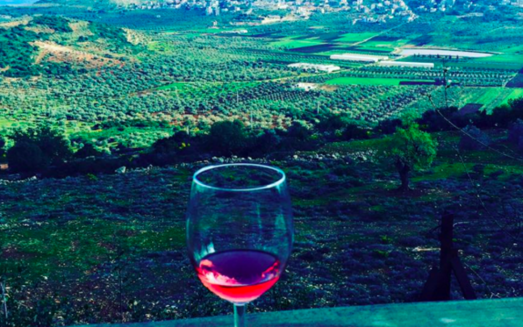 A glass of Lotem's Rose, with the valleys of the Lower Galilee in the background (Jessica Steinberg/Times of Israel)