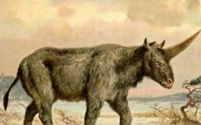 Illustrative visualization of a long-extinct animal known as the Siberian unicorn, or the Elasmotherium sibiricum (YouTube screen cap)