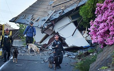 Rescuers and their dogs patrol next to collapsed houses in Mashiki, Kumamoto prefecture after a powerful earthquake in Japan on April 16, 2016. (AFP PHOTO/KAZUHIRO NOGI)