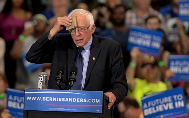 Democratic presidential candidate Bernie Sanders addresses the crowd during a campaign rally at the Big Sandy Superstore Arena, in Huntington, West Virginia, April 26, 2016 . (John Sommers II/Getty Images/AFP)