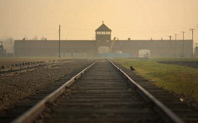 The railway track leading to the infamous 'Death Gate' at the Auschwitz II Birkenau extermination camp on November 13, 2014, in Oswiecim, Poland. (JTA/Christopher Furlong/ Getty Images/File)