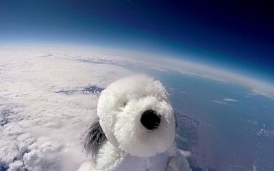 Sam the cuddly toy dog flies high in the sky after taking off from Morecambe, England Tuesday April 5, 2016 attached to a special camera and a helium balloon. Sending the toy dog into the sky was part of a science project by Morecambe Bay Community Primary School which joined forces with a local hotel . The toy dog reached an altitude of 12 miles above the earth's surface. (Morecambe Bay Community Primary School and English Lakes Hotels Resorts & Venues via AP)