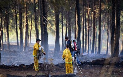 Firefighters try to extinguish a forest fire raging in Biriya Forest, near Safed, northern Israel, April 25, 2016. (Basel Awidat/Flash90)