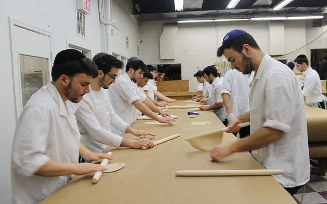 Matzah dough is rolled into thin, round discs before it is perforated and baked. Every 15 minutes at the Satmar Bakery in Brooklyn, the work ceases while all surfaces are scoured or replaced, and all hands are washed to remove stray bits of dough. (Uriel Heilman/JTA)