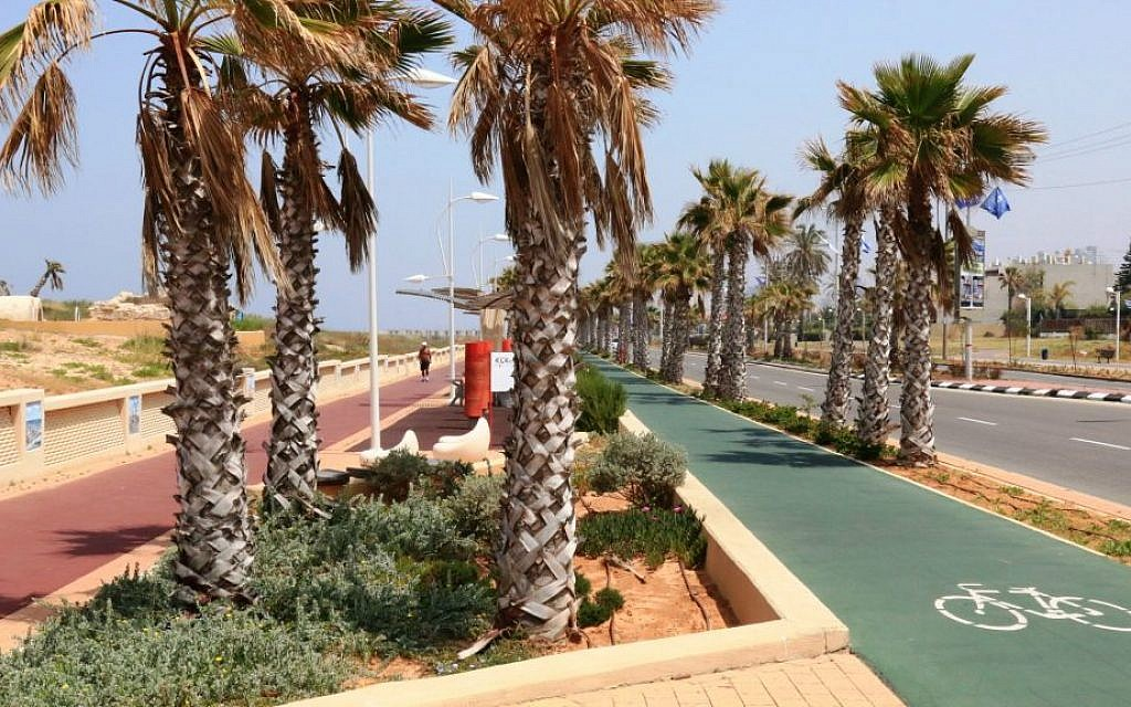 The boardwalk near a Roman-era burial site (Shmuel Bar-Am)