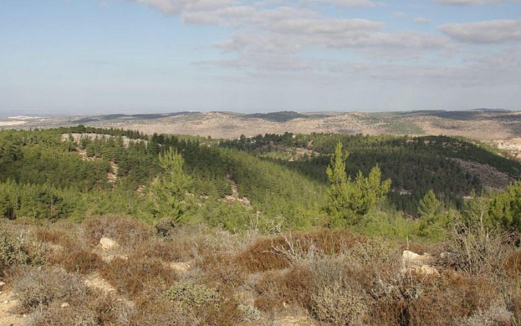 A view from Kfar Etzion (Shmuel Bar-Am)