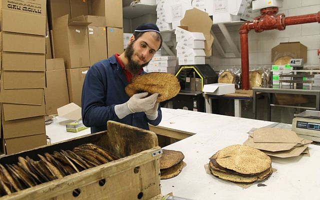 Every shmura matzah is inspected for quality and adherence to kosher standards before it is boxed. (Uriel Heilman/JTA)