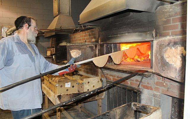 It takes about 20 seconds in a 1,300-degree Fahrenheit, coal-and-wood-fired oven to bake shmurah matzah to perfection. (Uriel Heilman/JTA)