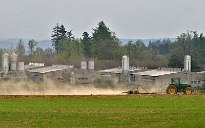 A tractor passing by a huge industrial pig farm situated at the site of former concentration camp in Lety, south Bohemia, May 4, 2005. (AFP/MICHAL CIZEK)