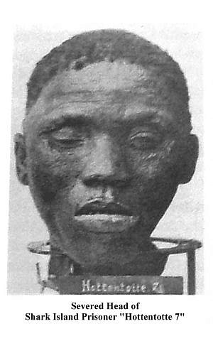 Severed head of Shark Island prisoner Hottentotte 7 (Wikipedia)