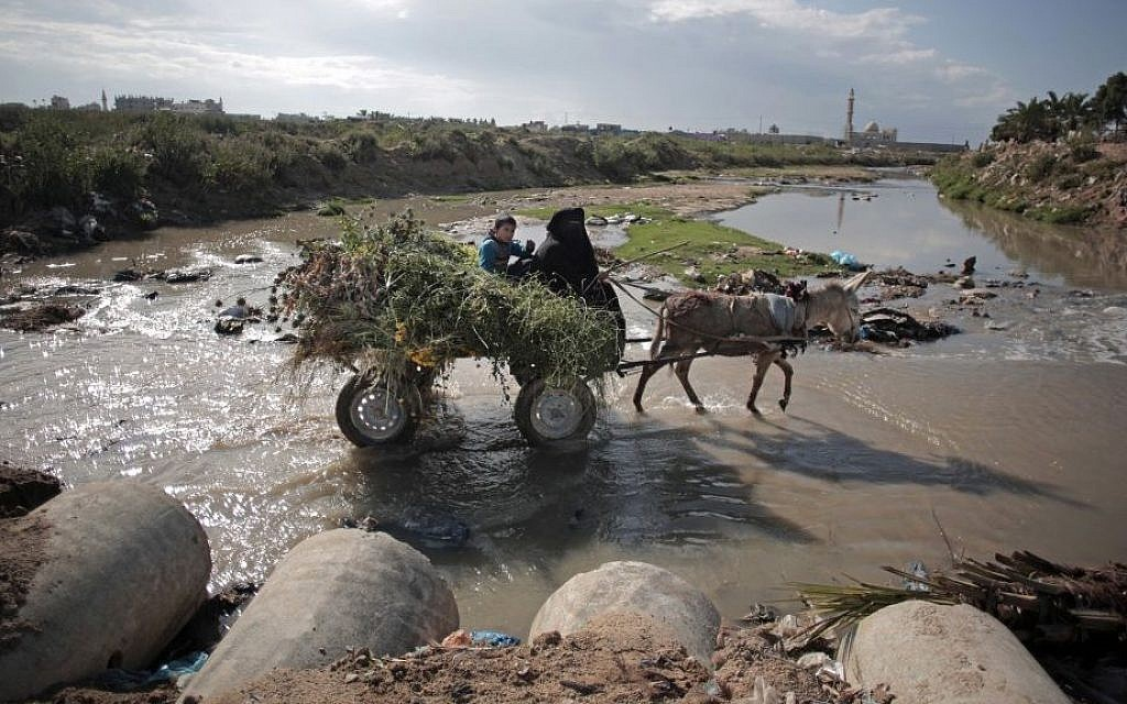 In this Wednesday, April 13, 2016 photo, A woman makes her way with her donkey in sewage water in Mighraqa neighborhood on the outskirts of Gaza City. (AP Photo/Khalil Hamra)