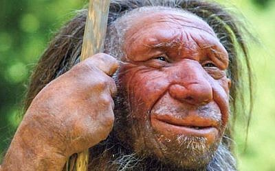 A reconstruction of a Neanderthal man at the Neanderthal Museum in Mettmann, Germany. (Neanderthal Museum)