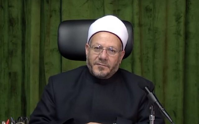 Egyptian Grand Mufti Dr. Shawki Allam (Screenshot/YouTube)