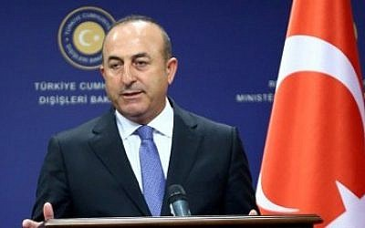 Turkish Foreign Minister Mevlut Cavusoglu speaks at a press conference in Ankara, on June 22, 2016. (AFP Photo/Adem Altan)