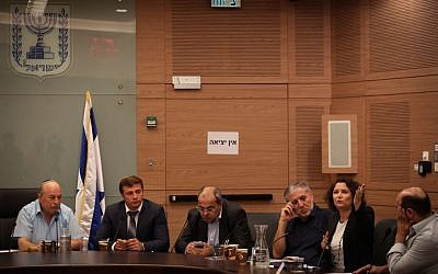 A meeting of the Knesset's Constitution, Law and Justice Committee on July 22, 2015 (Hadas Parush/Flash90)