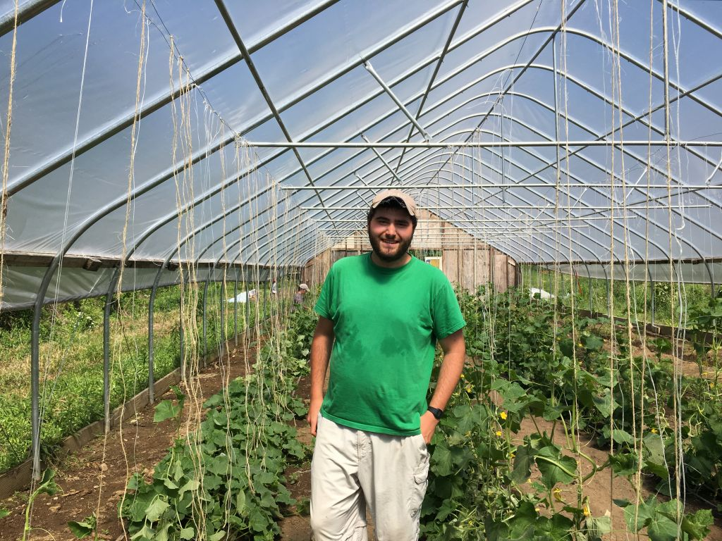 Tufts University student Noah Weinberg is a fellow at the Adamah Farm Project (Cathryn J. Prince/Times of Israel)