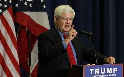 Former Speaker of the House Newt Gingrich introduces Republican Presidential candidate Donald Trump during a rally at the Sharonville Convention Center July 6, 2016, in Cincinnati, Ohio. (John Sommers II/Getty Images/AFP)