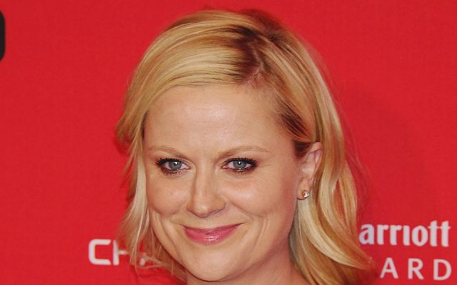 Comic Amy Poehler is in Israel regarding her purchase of the comedy 'Zero Motivation' for possible development as a TV series (David Shankbone/CC BY 3.0)