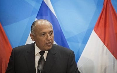 Egypt's Foreign Minister Sameh Shoukry speaks to the media at the Prime Minister's office in Jerusalem on Sunday, July 10, 2016, during a rare visit to Israel (Hadas Parush/Flash90)