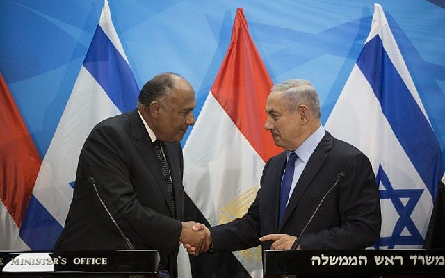 Prime Minister Benjamin Netanyahu meets with Egypt's Foreign Minister Sameh Shoukry at the Prime Minister's Office in Jerusalem on Sunday, July 10, 2016 (Hadas Parush/Flash90)