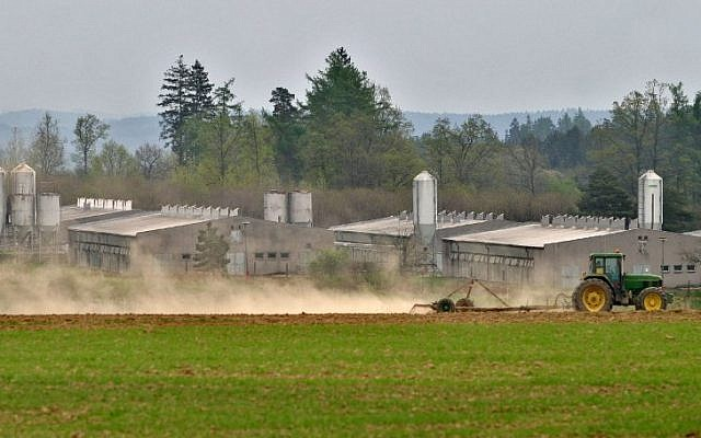 This file photo taken on May 04, 2005 shows a tractor passing by a huge industrial pig farm situated at the site of former concentration camp in Lety, south Bohemia. (AFP/ MICHAL CIZEK)