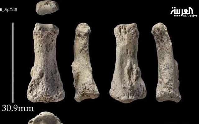 Human bones from a middle finger dating back 90,000 years found in Saudi Arabia, according to an announcement August 17, 2016 by the country's Commission for Tourism and National Heritage.