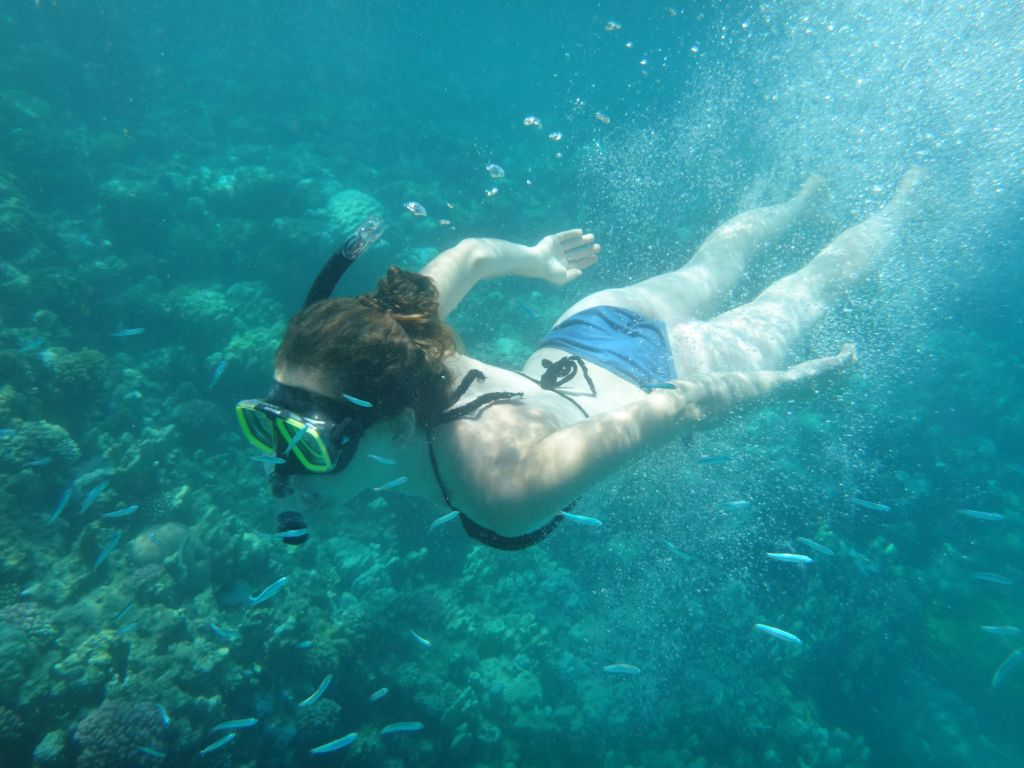 No Sinai terrorism here, from what this Israeli tourist can see in the Red Sea on August 15, 2016. (courtesy Yuval Saidman)
