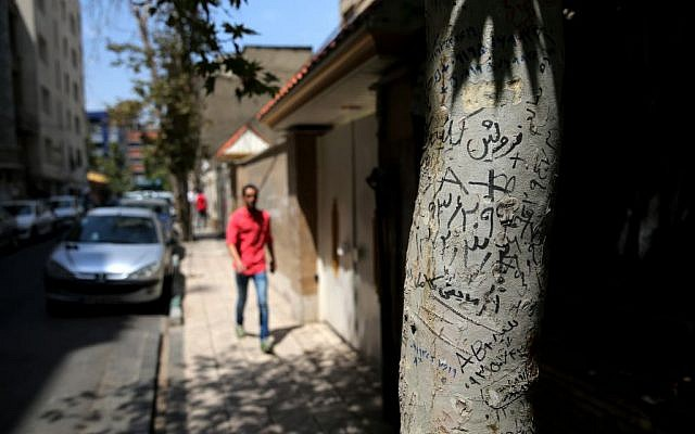 Handwritten advertisements for human kidneys for sale that includes the sellers' phone number and blood type, on a tree in downtown Tehran, Iran, August. 2, 2016. (AP/Ebrahim Noroozi)
