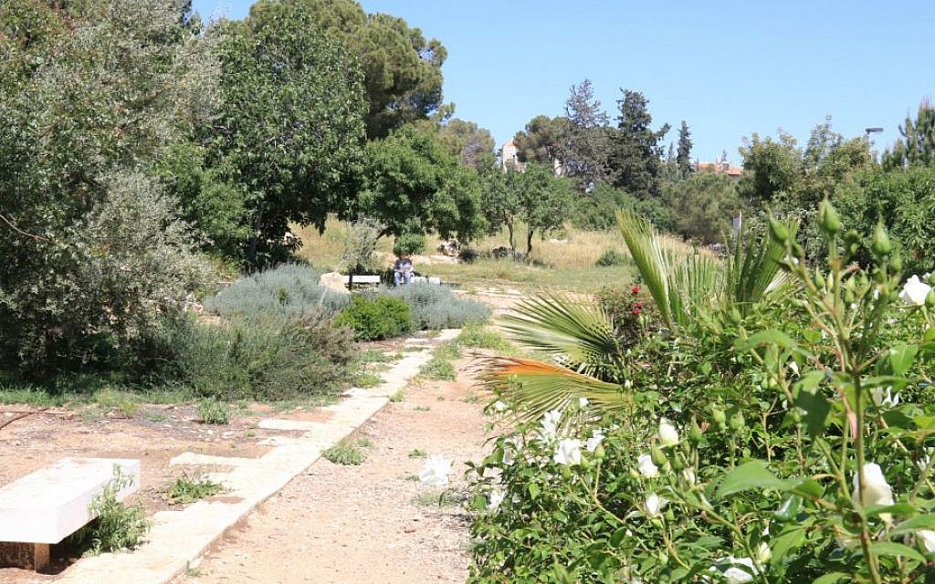 The Azulai Orchard in the exclusive neighborhood of Talbieh. (Shmuel Bar-Am)