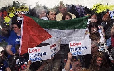 A demonstrator holds a Palestinian flag at the 2016 Democratic National Convention (Republican Jewish Coalition/YouTube screenshot)