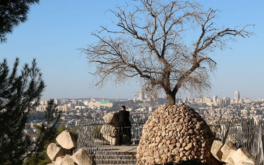 A tree grows from a sculpture designed by a resident of Ramat Rachel at the Yair Overlook on the kibbutz. (Shmuel Bar-Am)