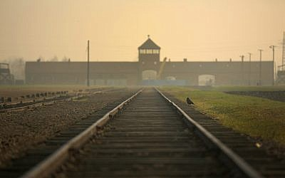 The railway track leading to the infamous 'Death Gate' at the Auschwitz II Birkenau extermination camp, on November 13, 2014, in Oswiecim, Poland. (Christopher Furlong/Getty Images via JTA)