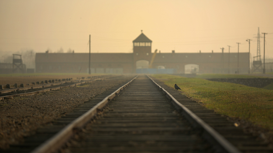 Polish Court Jails Men Accused Of Stripping Naked, Killing Lamb At Auschwitz